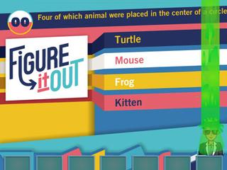 Figure It Out Triviatorium