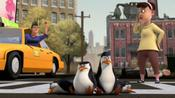 Penguins Of Madagascar: Zoo Break! pictures