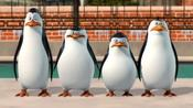 Penguins Of Madagascar: A Trip To The Zoo pictures